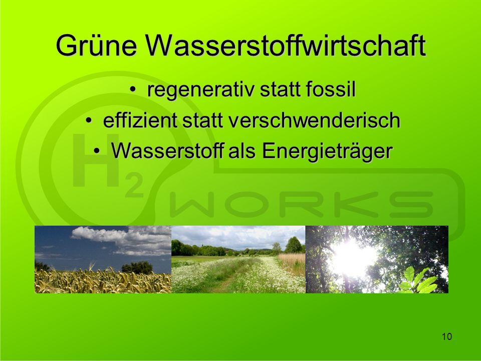 Grüne Wasserstoffwirtschaft