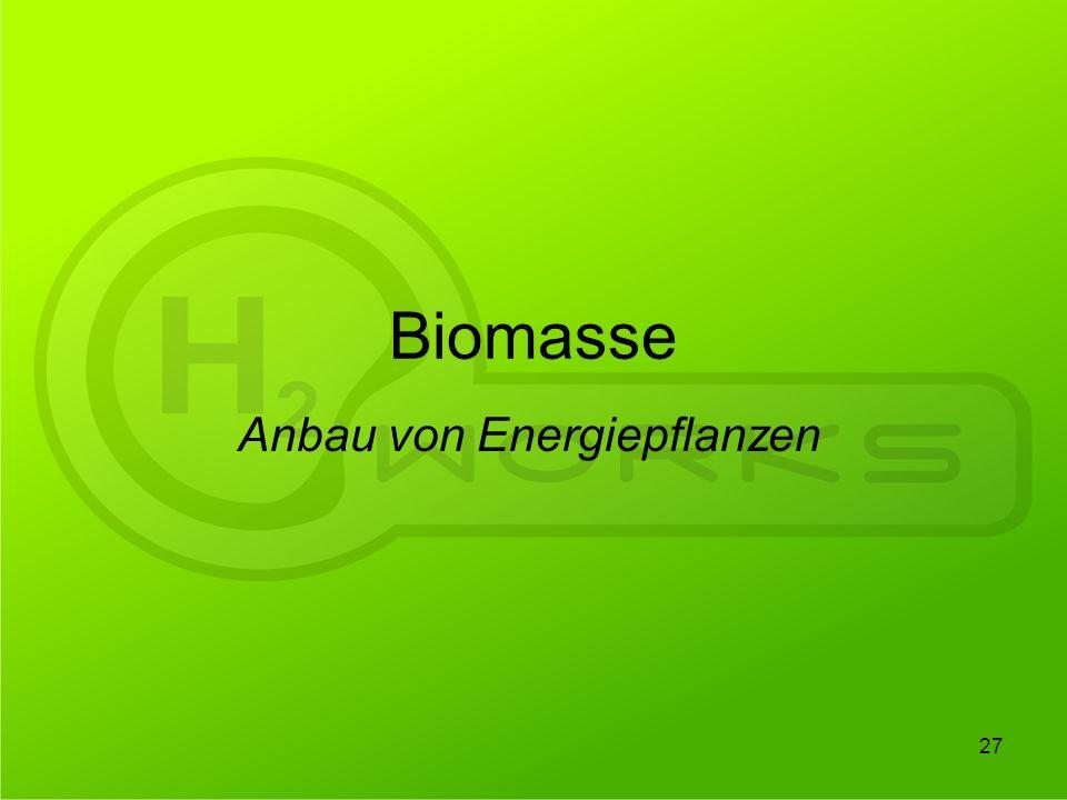 Anbau von Energiepflanzen