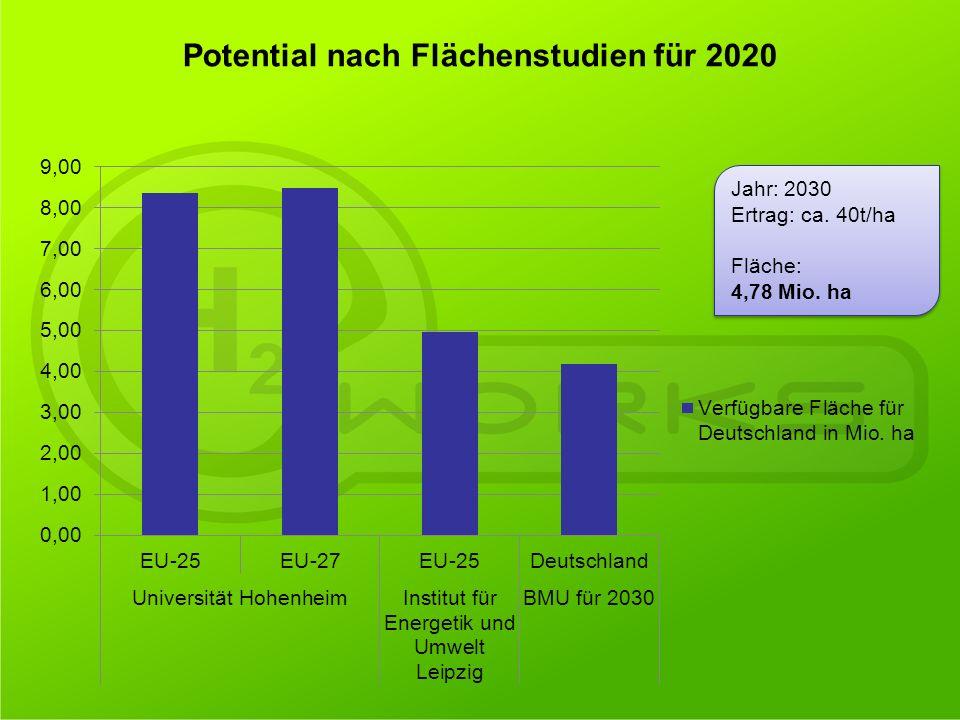 Jahr: 2030 Ertrag: ca. 40t/ha Fläche: 4,78 Mio. ha