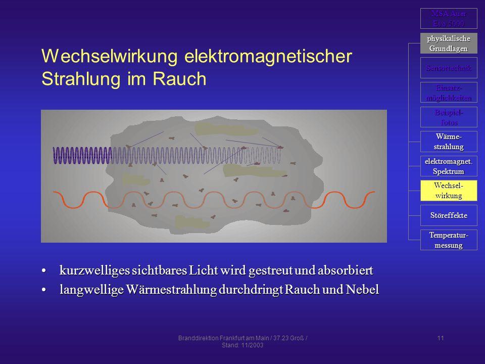 Wechselwirkung elektromagnetischer Strahlung im Rauch