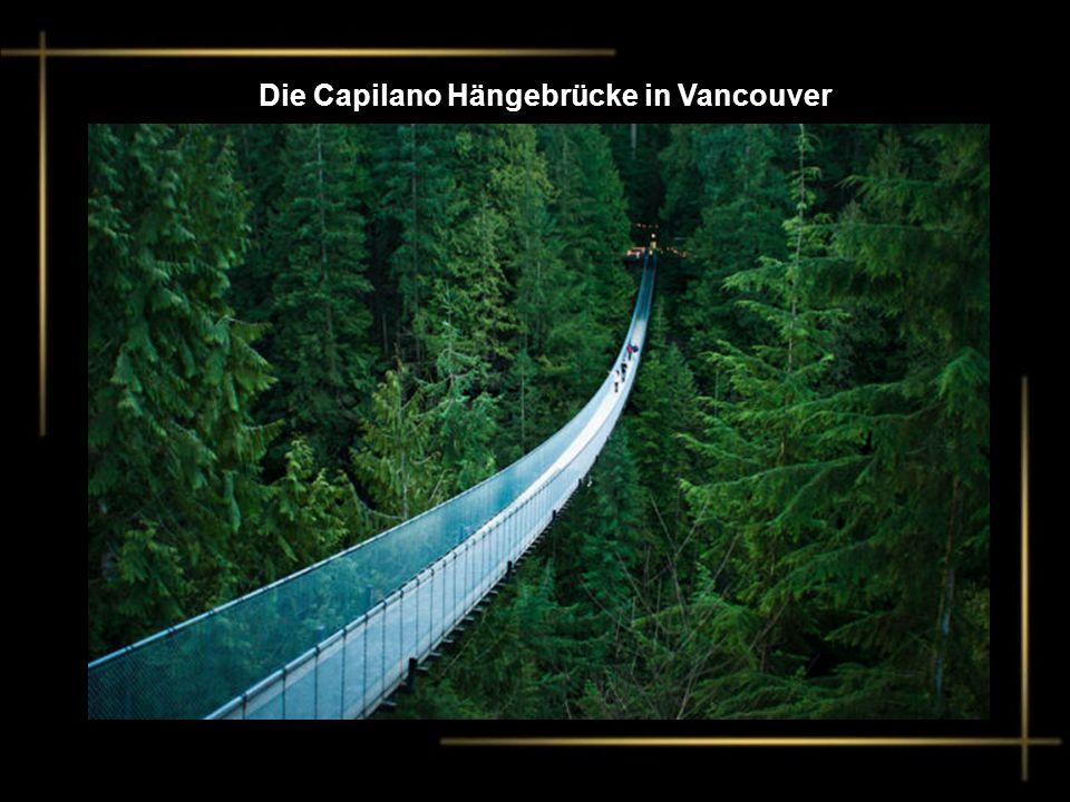 Die Capilano Hängebrücke in Vancouver