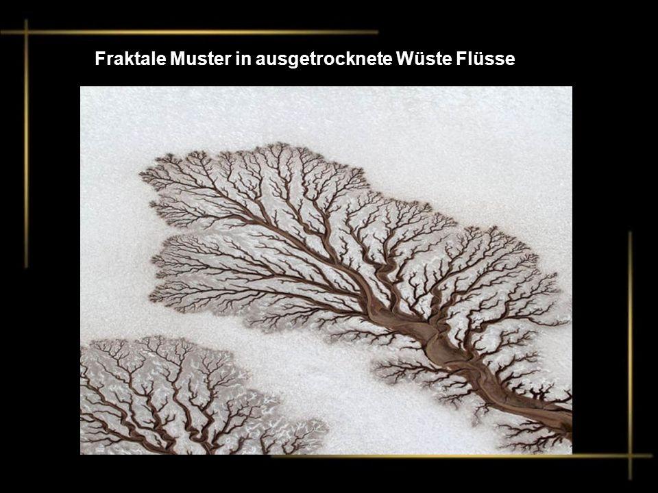 Fraktale Muster in ausgetrocknete Wüste Flüsse