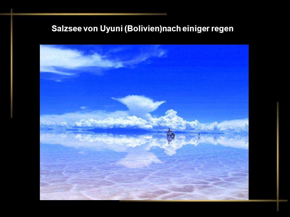 Salzsee von Uyuni (Bolivien)nach einiger regen