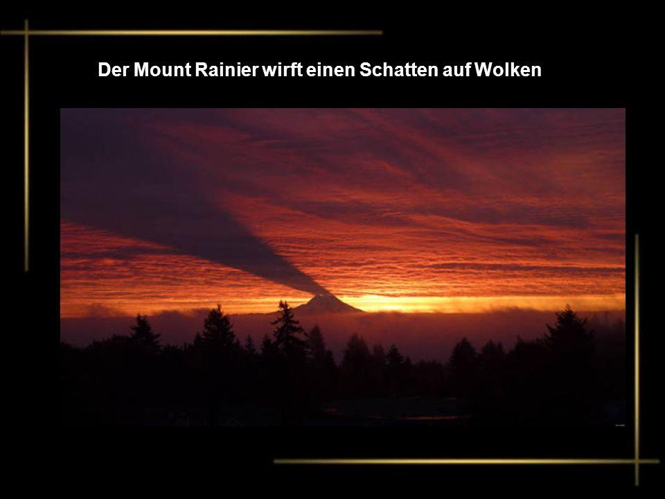Der Mount Rainier wirft einen Schatten auf Wolken