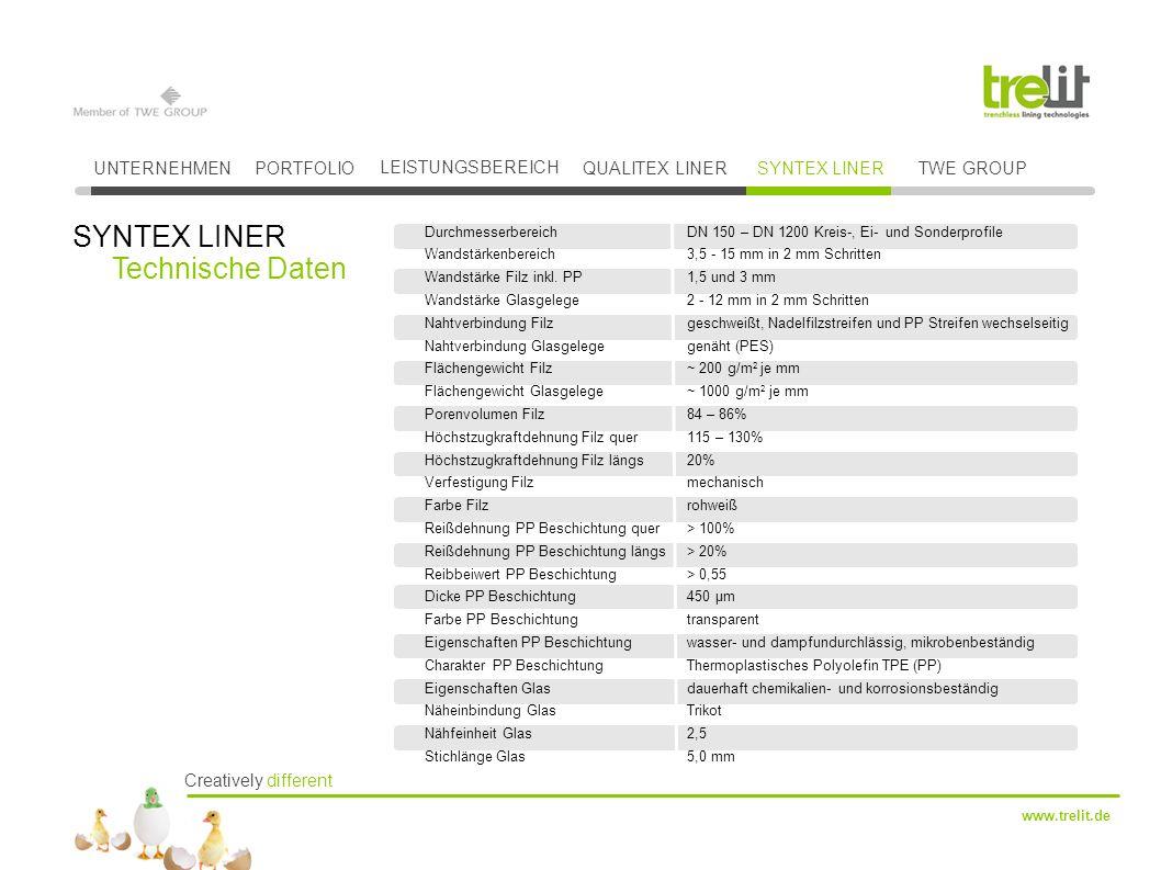 SYNTEX LINER Technische Daten UNTERNEHMEN PORTFOLIO LEISTUNGSBEREICH