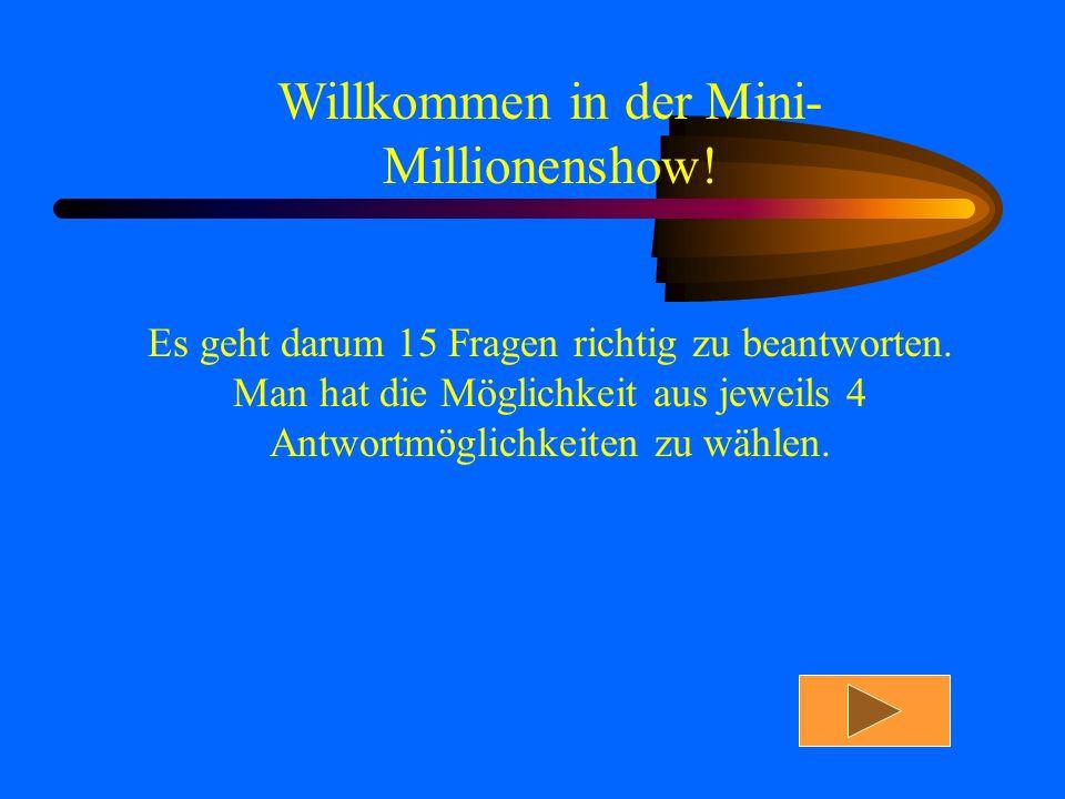 Willkommen in der Mini-Millionenshow!
