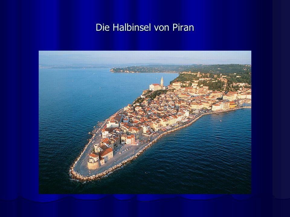 Die Halbinsel von Piran
