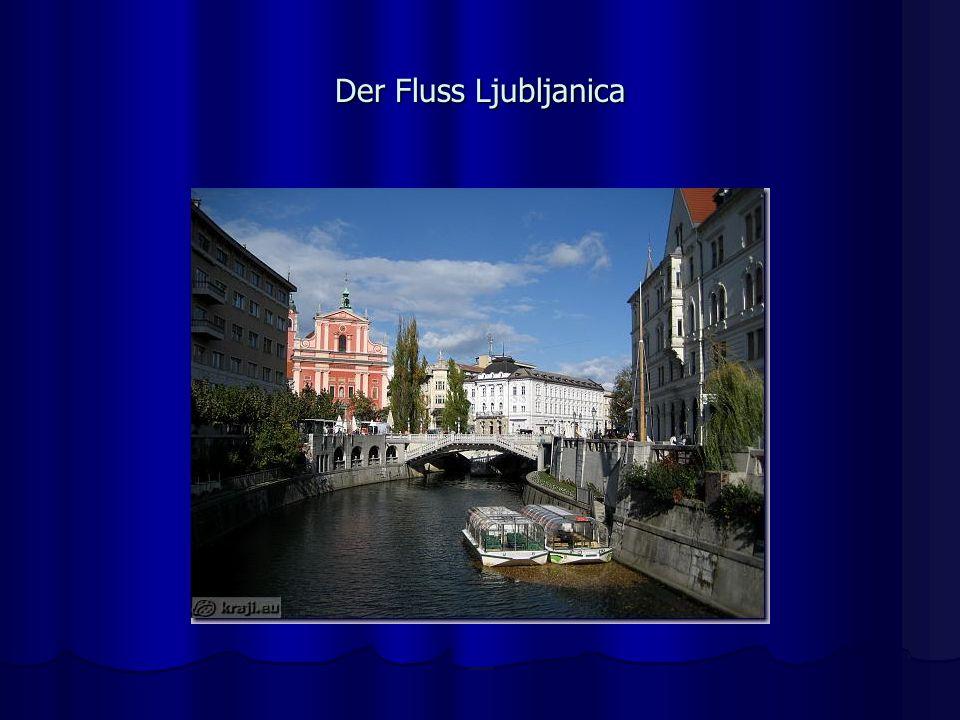 Der Fluss Ljubljanica