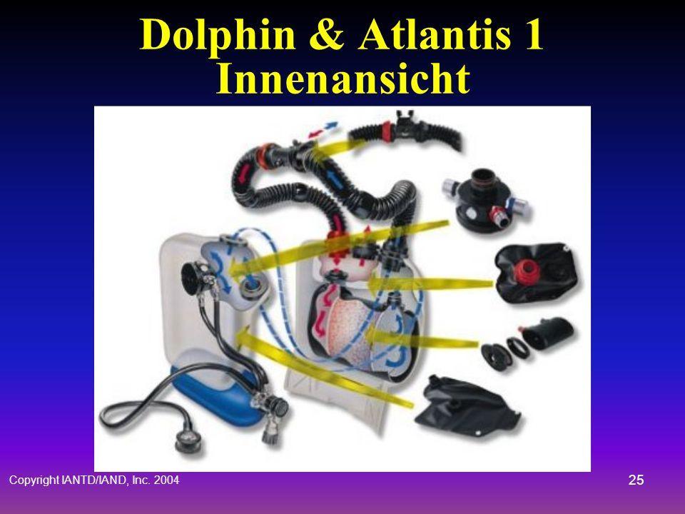 Dolphin & Atlantis 1 Innenansicht