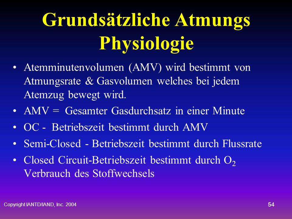 Grundsätzliche Atmungs Physiologie