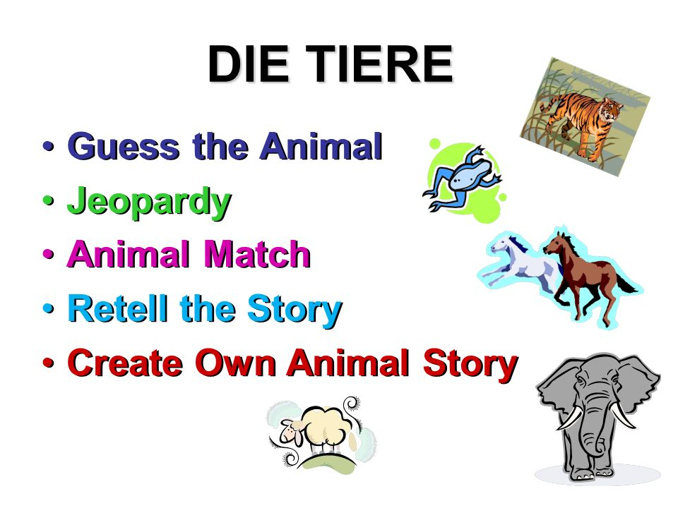 DIE TIERE Guess the Animal Jeopardy Animal Match Retell the Story