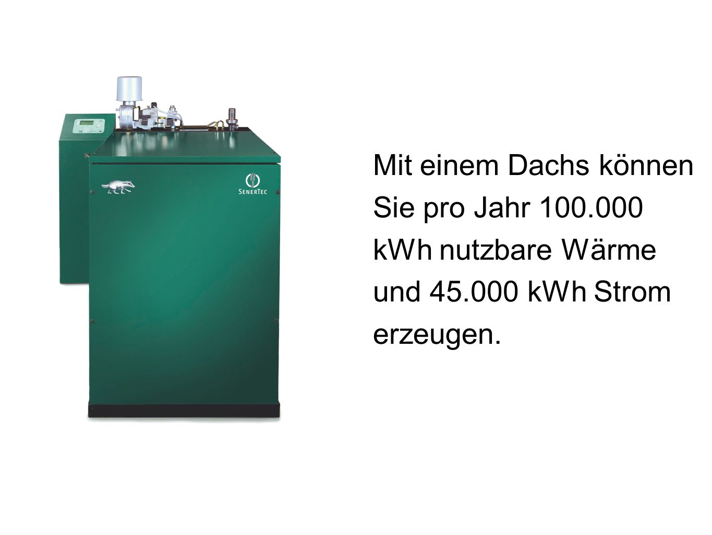 Mit einem Dachs können Sie pro Jahr 100. 000 kWh nutzbare Wärme und 45