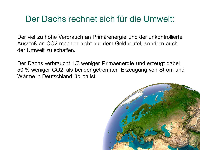 Der Dachs rechnet sich für die Umwelt: