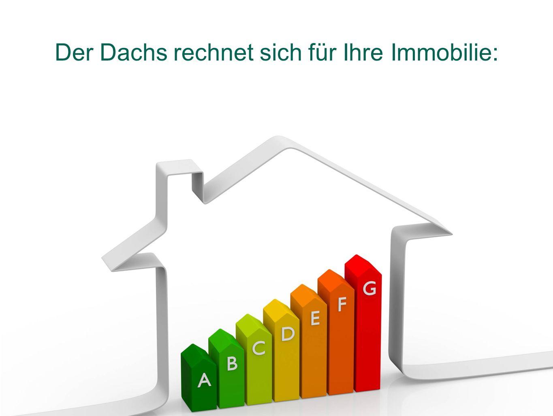 Der Dachs rechnet sich für Ihre Immobilie: