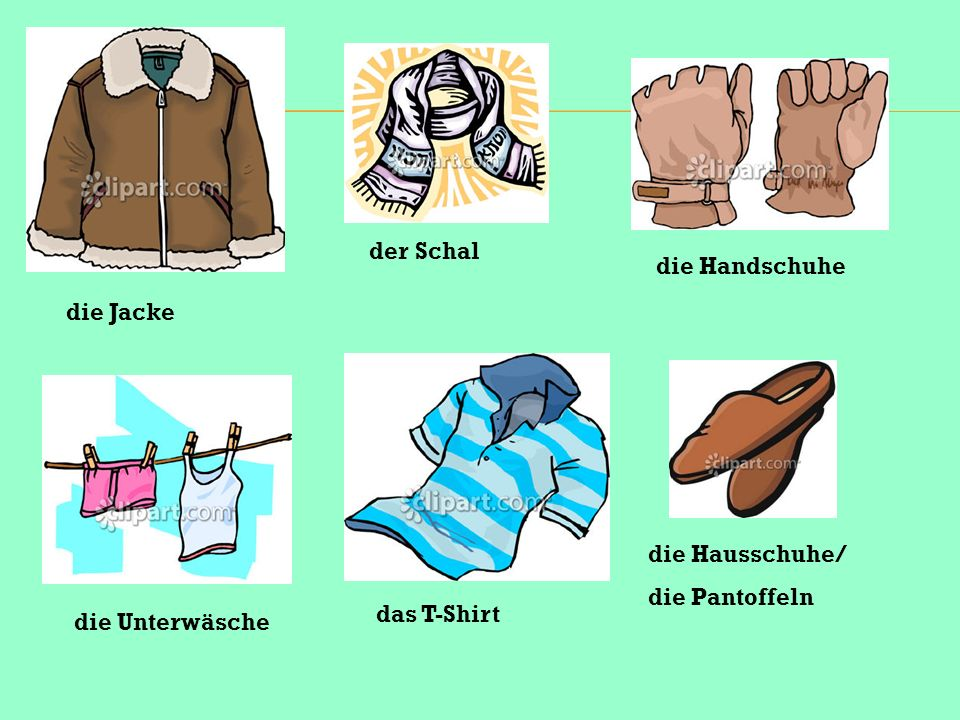 der Schal die Handschuhe die Jacke die Hausschuhe/ die Pantoffeln das T-Shirt die Unterwäsche
