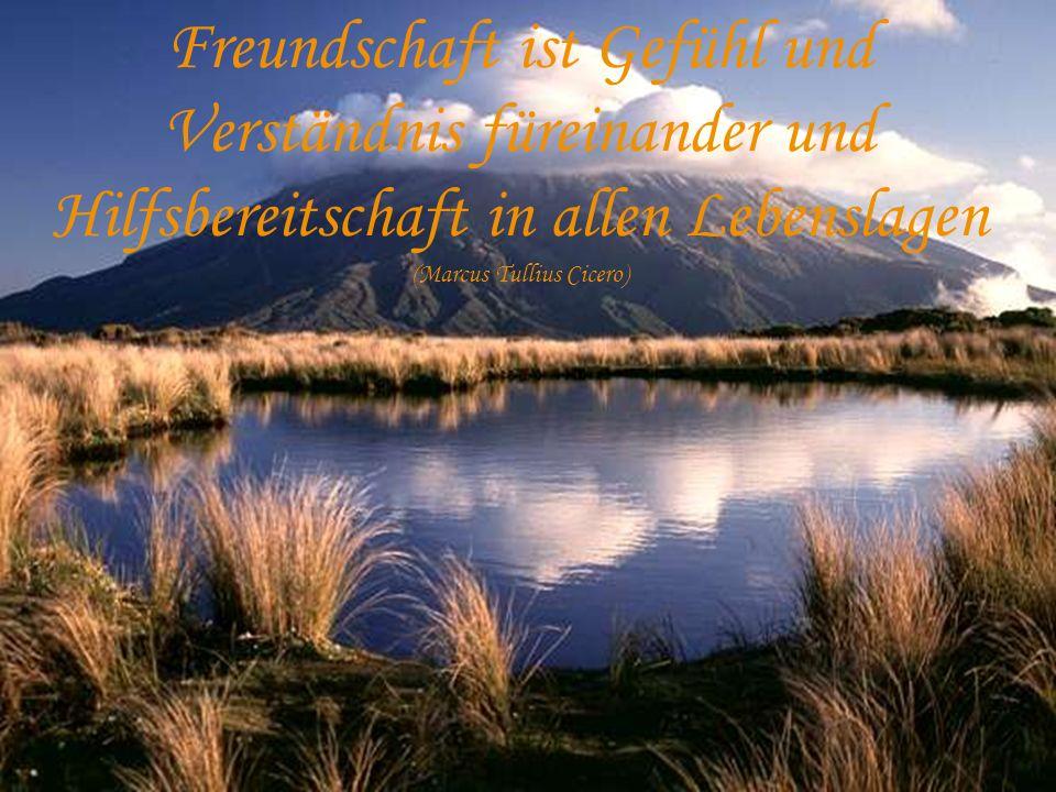Freundschaft ist Gefühl und Verständnis füreinander und Hilfsbereitschaft in allen Lebenslagen (Marcus Tullius Cicero)