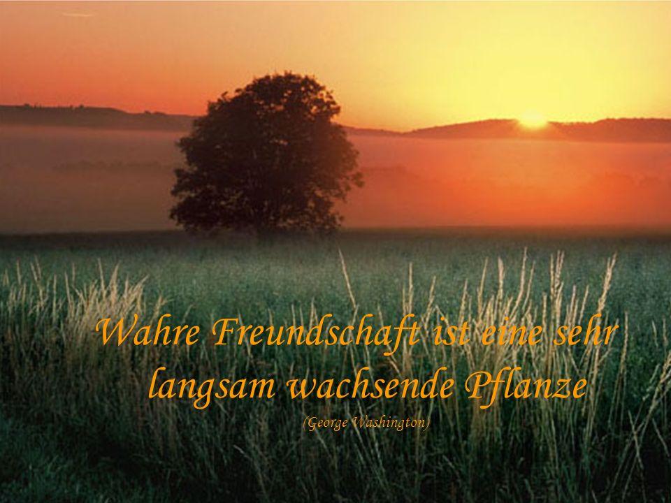 Wahre Freundschaft ist eine sehr langsam wachsende Pflanze (George Washington)