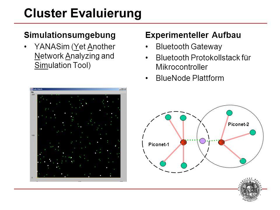Cluster Evaluierung Simulationsumgebung Experimenteller Aufbau