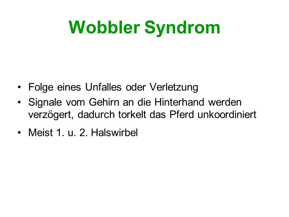 Wobbler Syndrom Folge eines Unfalles oder Verletzung