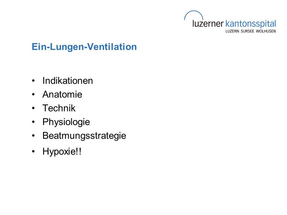 Ein-Lungen-Ventilation