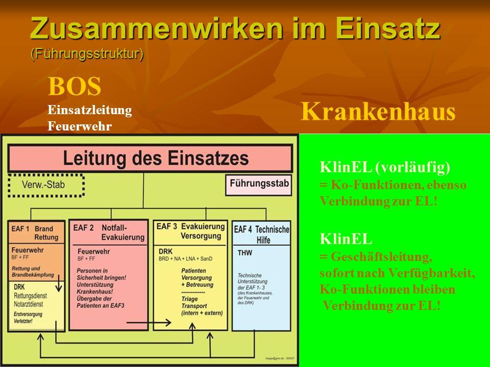 Zusammenwirken im Einsatz (Führungsstruktur)