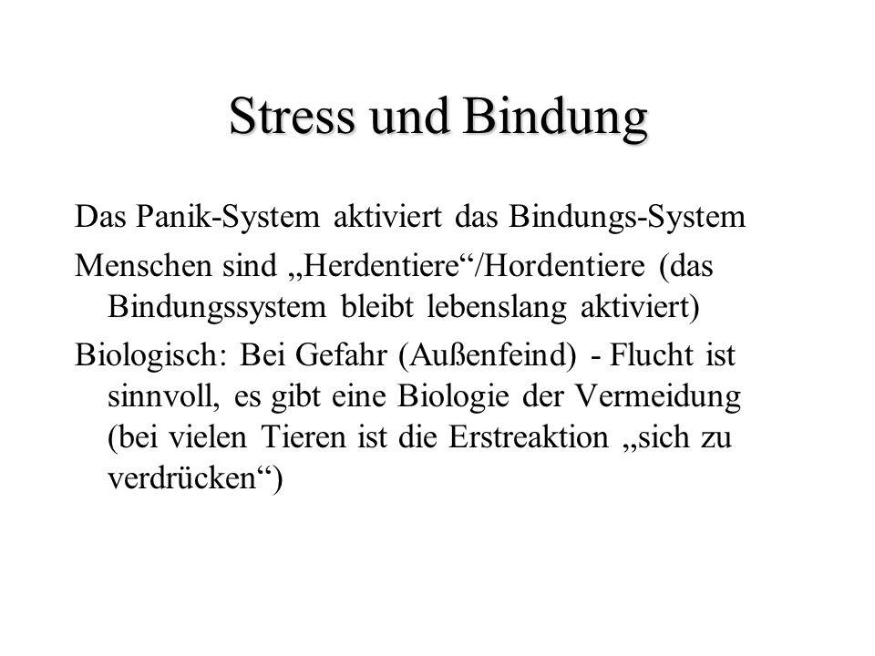 Stress und Bindung Das Panik-System aktiviert das Bindungs-System