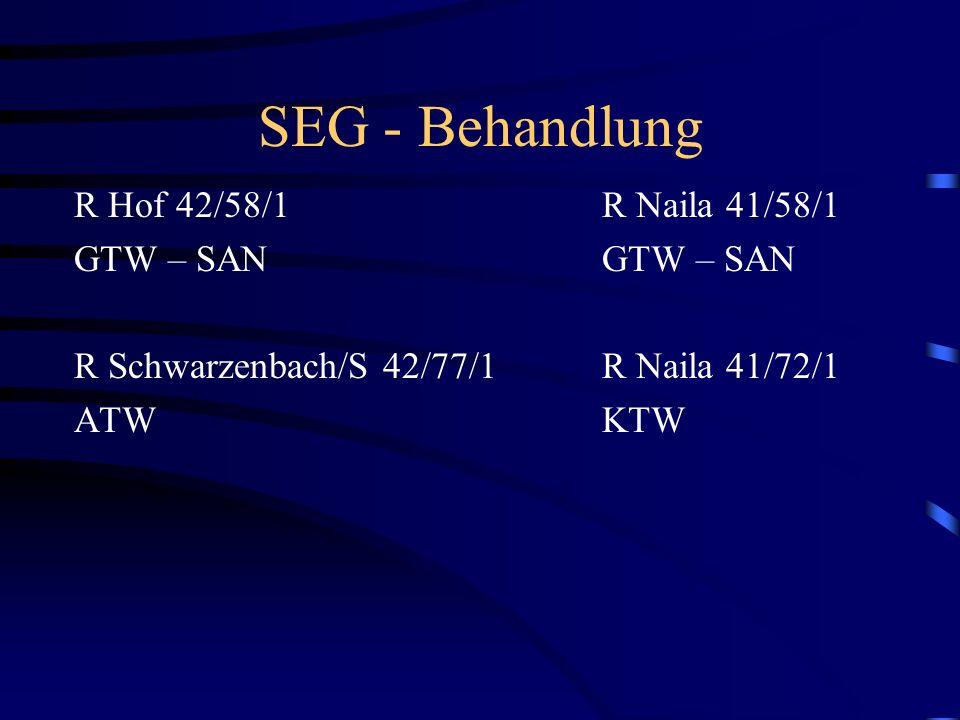 SEG - Behandlung R Hof 42/58/1 GTW – SAN R Schwarzenbach/S 42/77/1 ATW