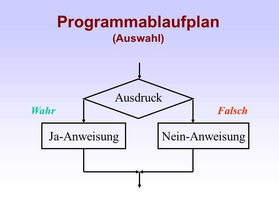 Programmablaufplan (Auswahl)
