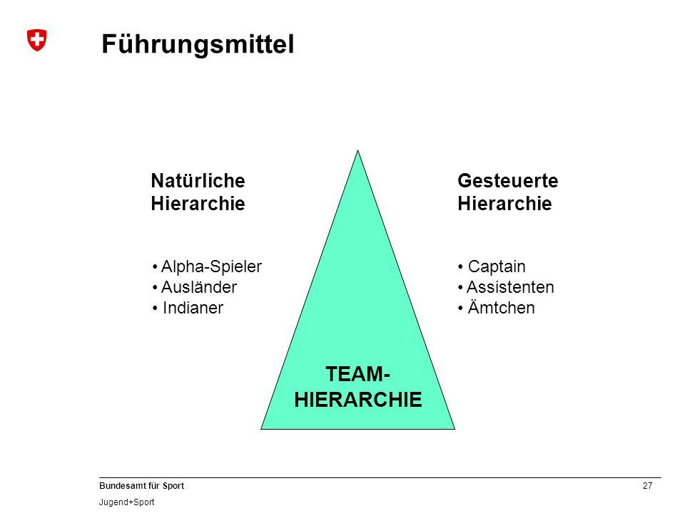 Führungsmittel TEAM- HIERARCHIE Natürliche Hierarchie Gesteuerte