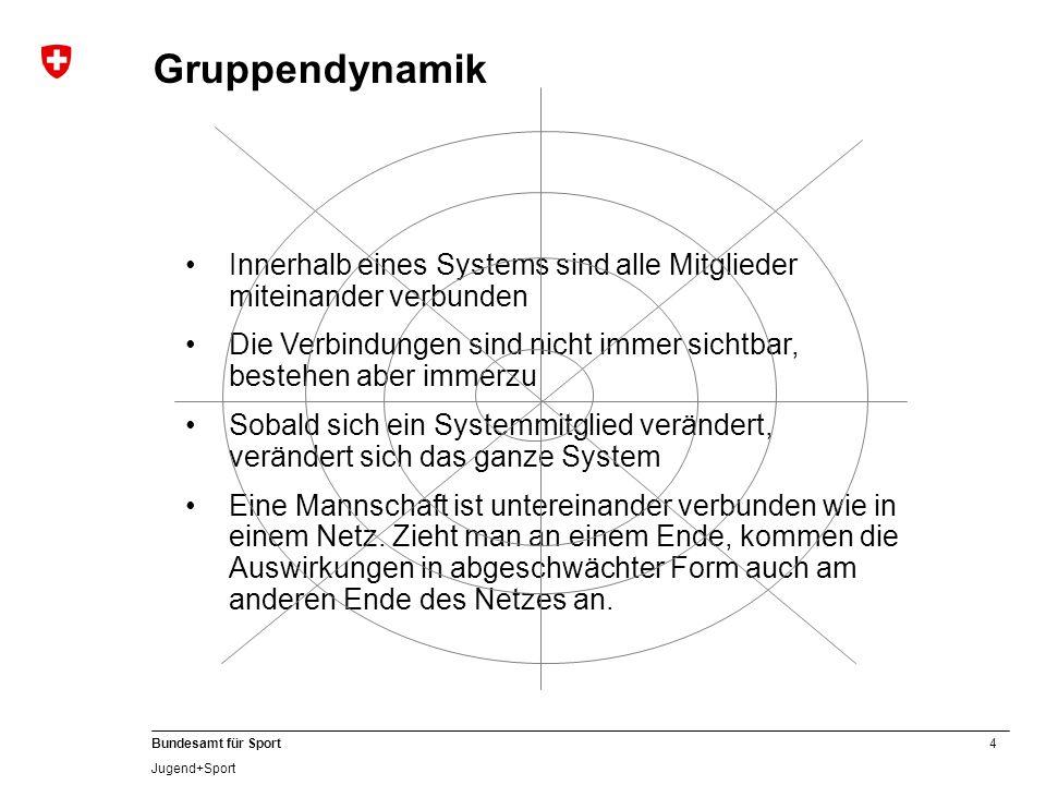 Gruppendynamik Innerhalb eines Systems sind alle Mitglieder miteinander verbunden.