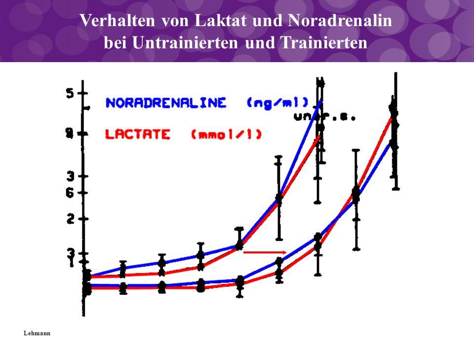 Verhalten von Laktat und Noradrenalin