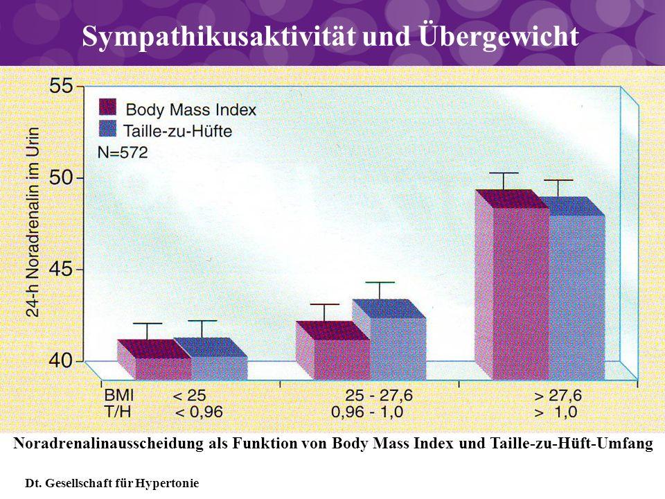 Sympathikusaktivität und Übergewicht