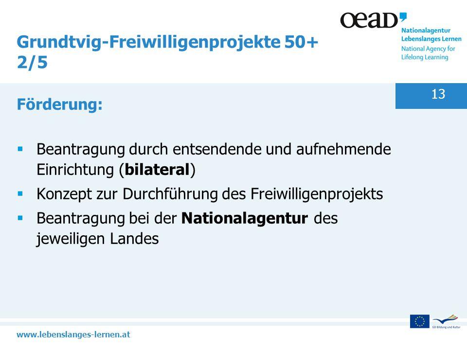 Grundtvig-Freiwilligenprojekte 50+ 2/5