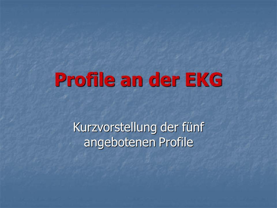 Kurzvorstellung der fünf angebotenen Profile