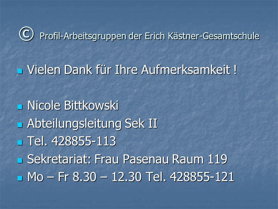 © Profil-Arbeitsgruppen der Erich Kästner-Gesamtschule