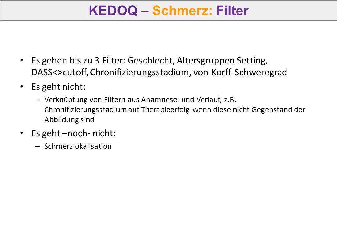KEDOQ – Schmerz: Filter