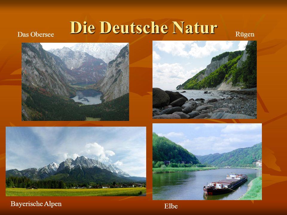 Die Deutsche Natur Das Obersee Rügen Bayerische Alpen Elbe