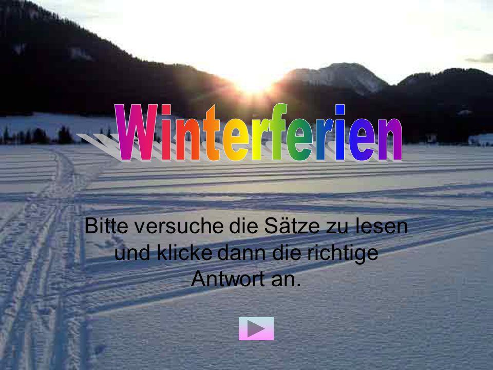 Winterferien Bitte versuche die Sätze zu lesen und klicke dann die richtige Antwort an.