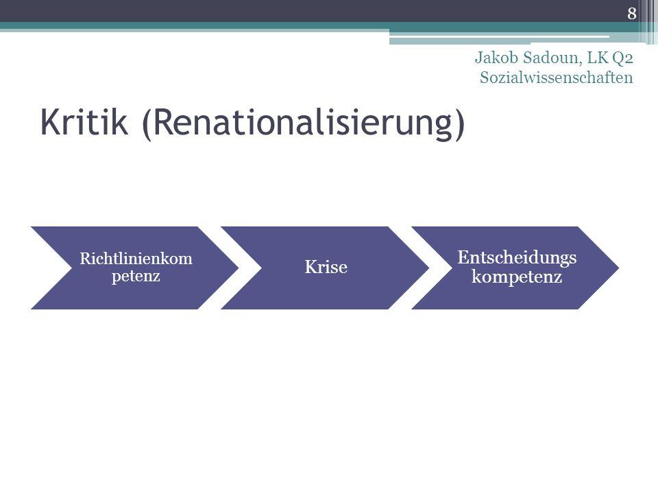 Kritik (Renationalisierung)