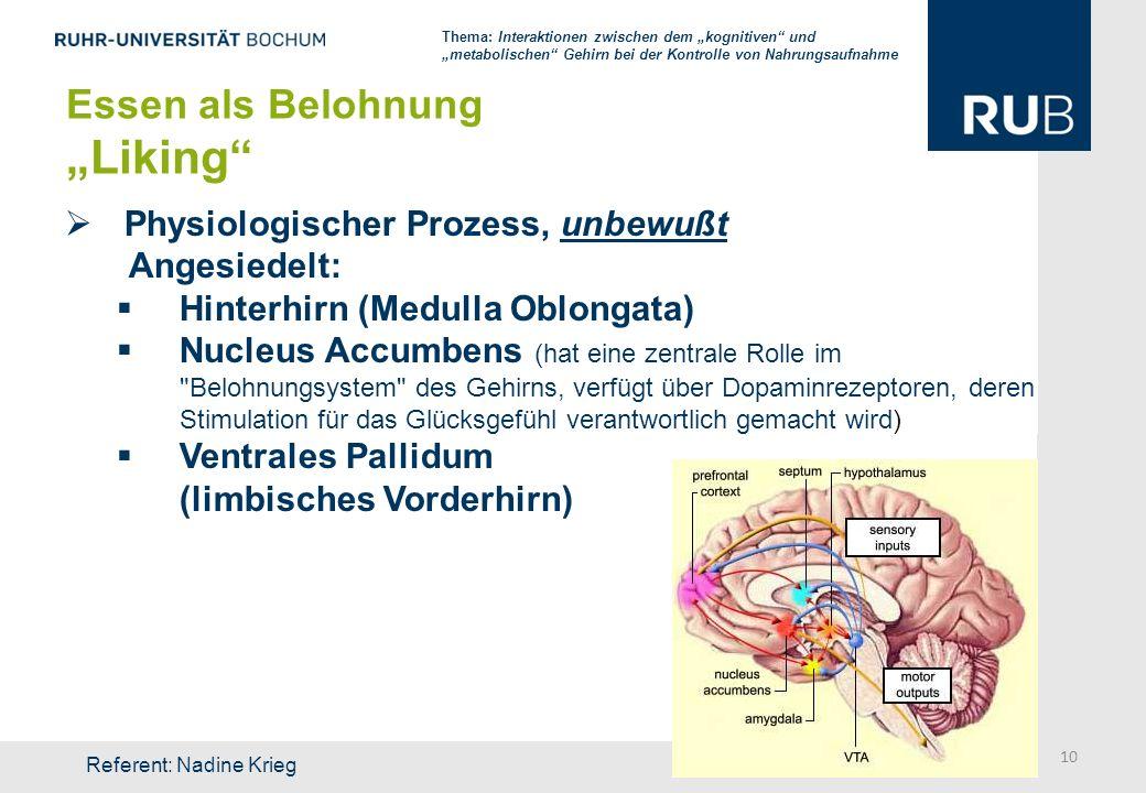 """""""Liking Essen als Belohnung Physiologischer Prozess, unbewußt"""