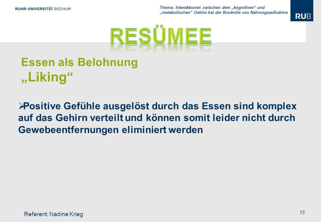 """Resümee """"Liking Essen als Belohnung"""