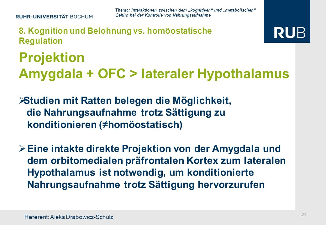 Amygdala + OFC > lateraler Hypothalamus