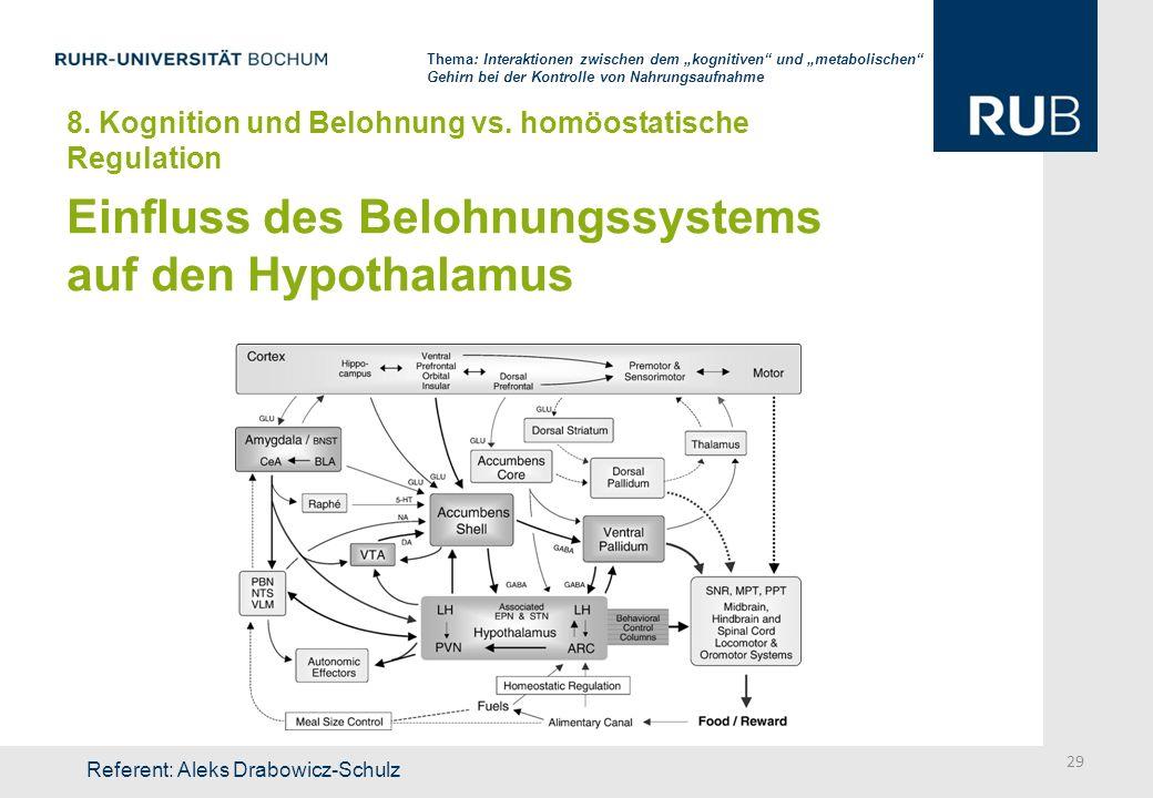 Einfluss des Belohnungssystems auf den Hypothalamus