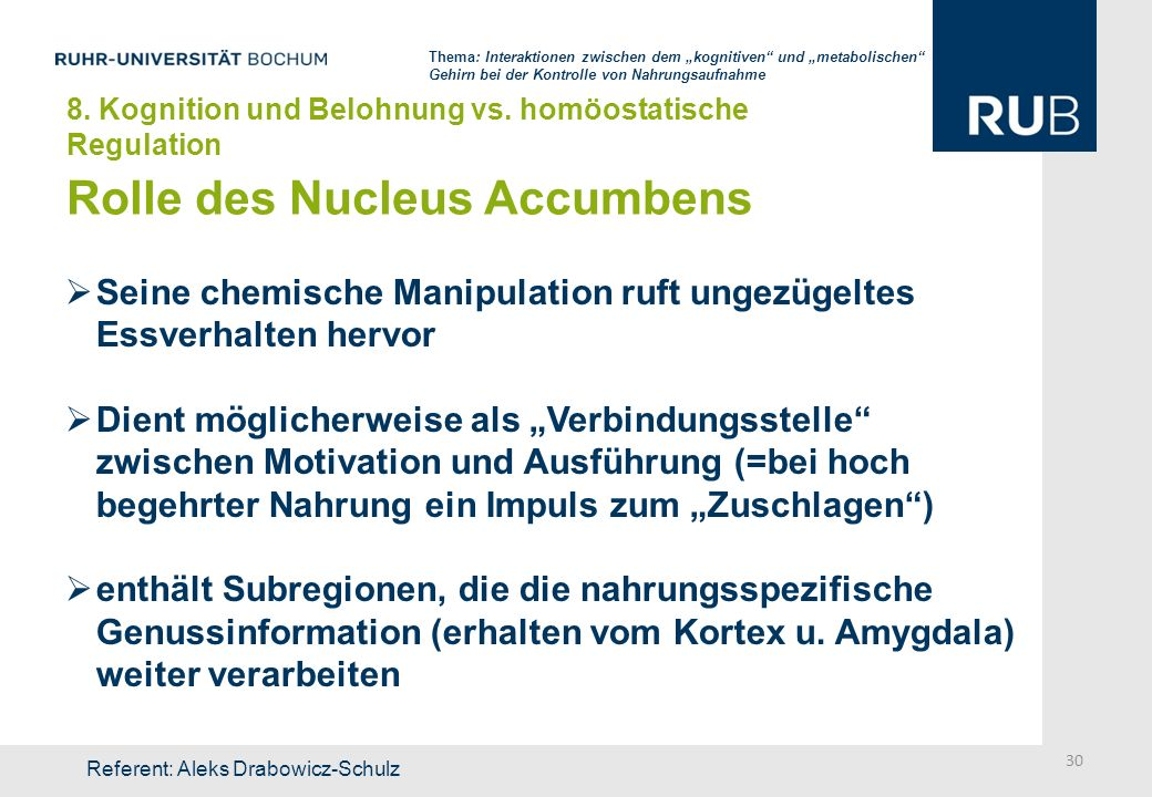 Rolle des Nucleus Accumbens