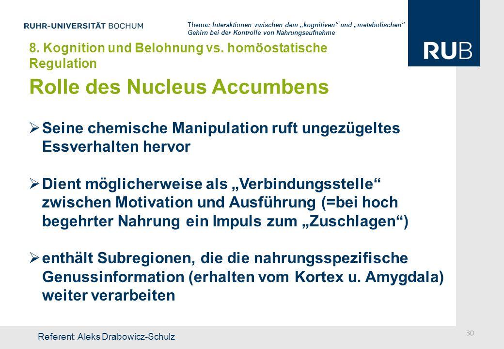 Rolle des Nucleus Accumbens