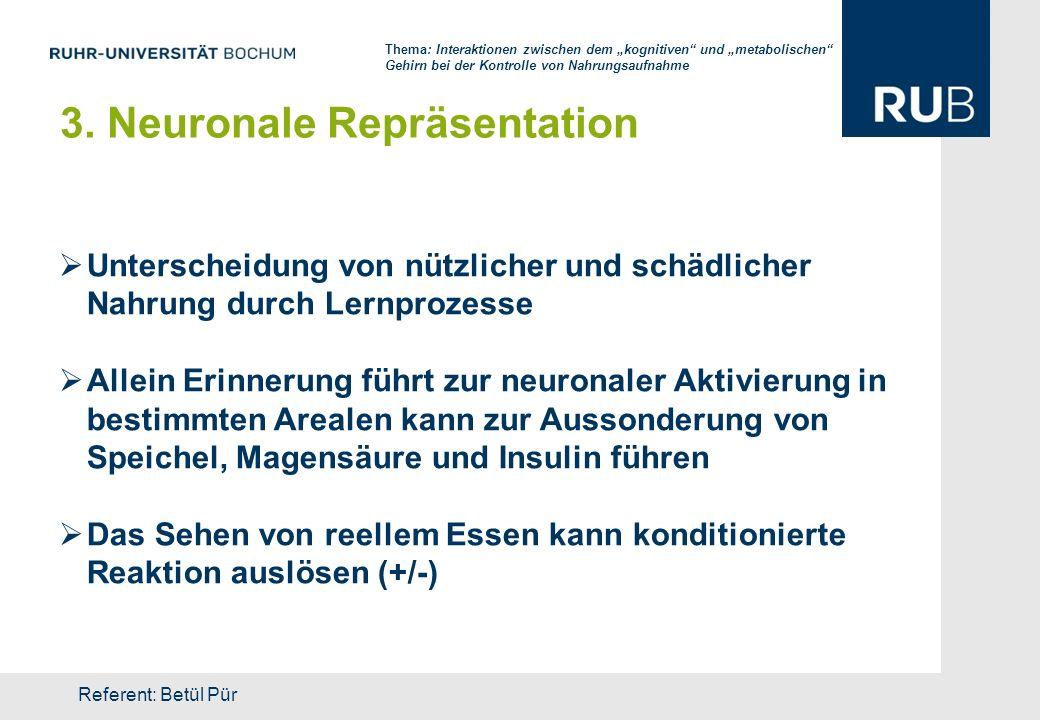 3. Neuronale Repräsentation