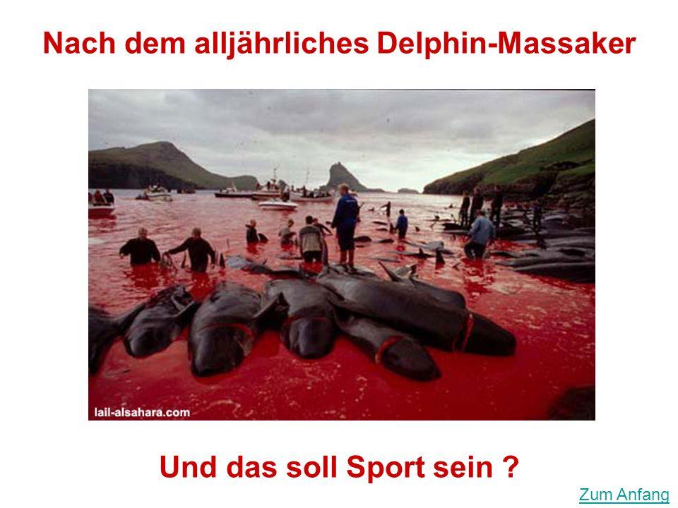Nach dem alljährliches Delphin-Massaker