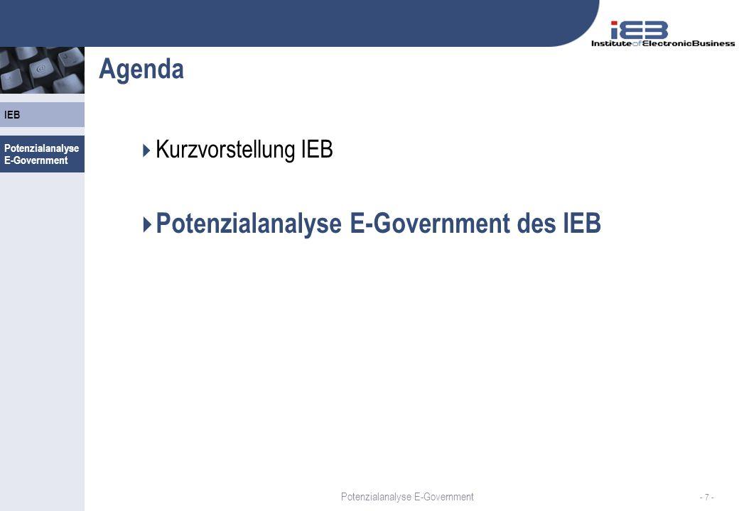 Potenzialanalyse E-Government des IEB