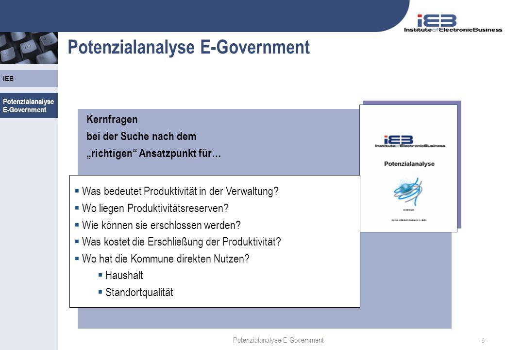Potenzialanalyse E-Government