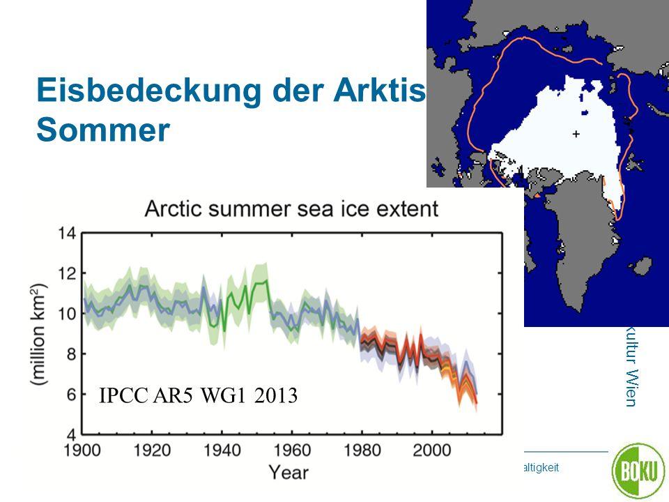 Eisbedeckung der Arktis Sommer